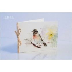 Blahopřání *Ptáčci vítají jaro No.II*